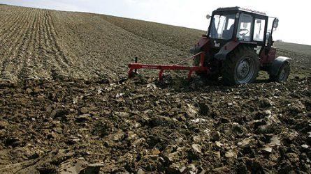 Az Agrárgazdasági Kutató Intézet szerint erős a magyar mezőgazdaság
