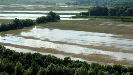 A Sión történő vízeresztés miatt 660 hektár föld került víz alá Somogyban