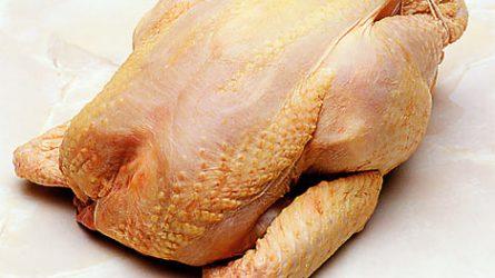 Alacsonyabb volt a vágócsirke élősúlyos termelői ára - Baromfipiaci jelentés