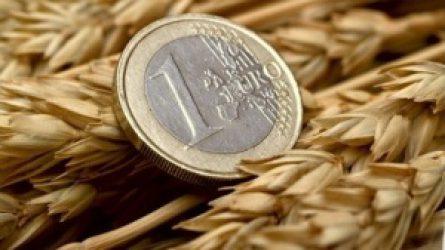 Megkezdték a területalapú támogatások utalását a gazdáknak