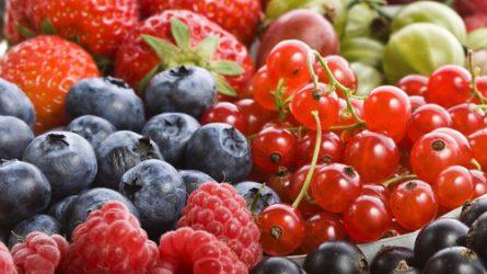 A zöldség-gyümölcs ágazat helyzetéről egyeztettek a minisztériumban