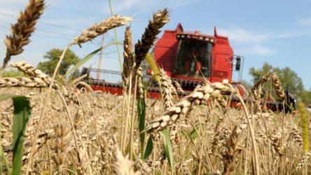 Változik a mezőgazdasági károk bejelentése