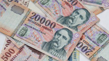 Magyarországon 4,145 milliárd euró jut a vidékfejlesztési programra