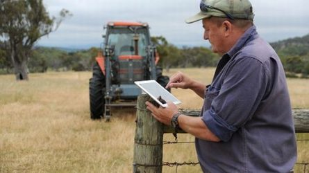 Egyre több gazdálkodó használ internetet szakmai céllal