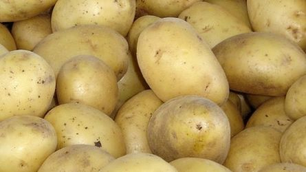Alacsonyabb a tárolási zöldségfélék ára - Zöldség- és gyümölcspiaci jelentés