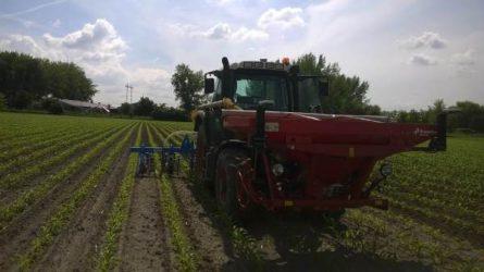A precíziós növénytermesztés, különös tekintettel a tápanyag-gazdálkodás gyakorlati tapasztalatai - Gazdálkodói interjú