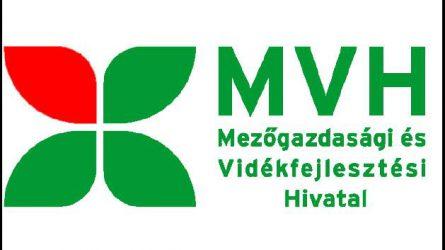 MVH: a Vegoline Kft.-nél tavaly nyáron bukkantak szabálytalanságokra, a hivatal feljelentést tett