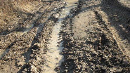 Esőből is megárt a sok - hátráltatja a mezőgazdasági munkát a felázott talaj