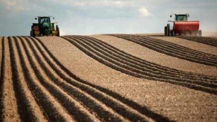 Lezárta az állami föld kezeléséről szóló javaslat részletes vitáját a mezőgazdasági bizottság