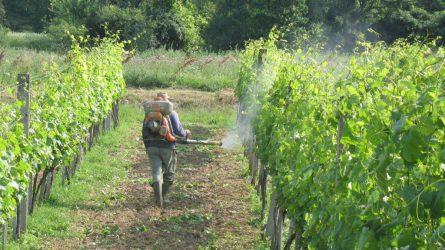 A hónap végéig kell bejelenteni a 2018-as növényvédőszer-forgalmi adatokat