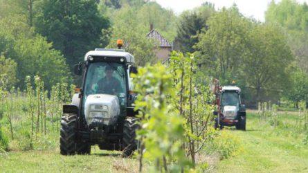 Lamborghini traktorok és kertészeti munkagépek az Auditker gépbemutatóján