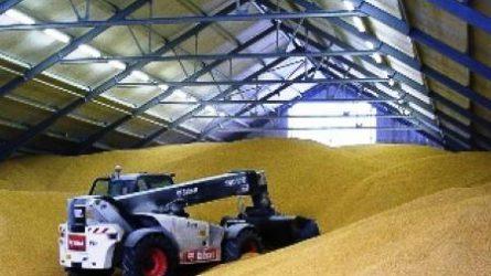 A kormány támogatja a családi gazdaságok gabonatárolóinak építését