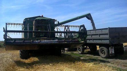 Békés megyében is javában aratnak – Agrofórum körkép (+KÉPEK)