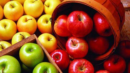 Az Idared és a Golden alma termelői ára is emelkedett - Zöldség- és gyümölcspiaci jelentés