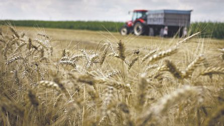 Agrárhitelezést ösztönző csomagon dolgozik az NGM