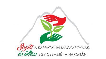 Segíts a kárpátaljai magyaroknak, és ültess egy csemetét a Hargitán!