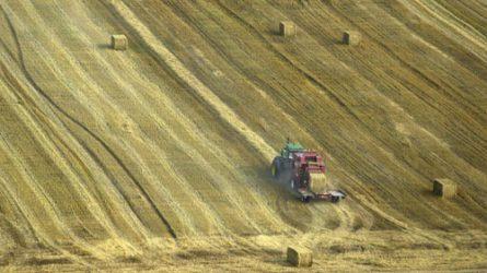 Kettős évet hagyott maga mögött a magyar mezőgazdaság