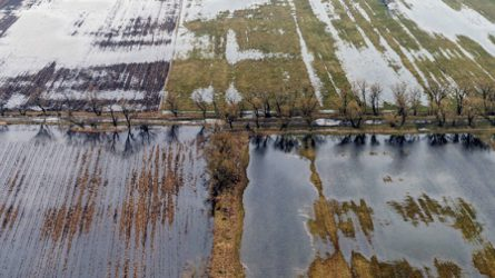 Az őszi vetéseket károsítja a belvíz Békésben