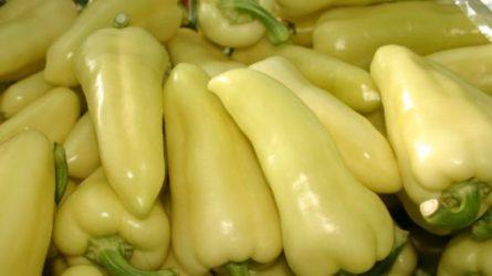 673 millió forintból nemesíthetnek zöldségeket