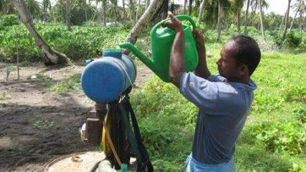 FAO: Hamarabb búcsút inthetünk a veszélyes peszticideknek