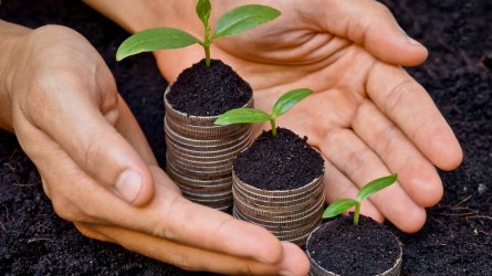 Az aszályhelyzet miatt sem változnak a zöldítés hazai előírásai