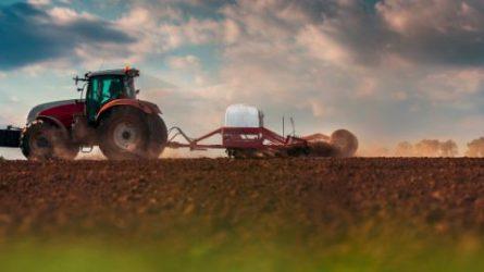 Innovatív talajgazdálkodás - Természetes módszerekkel a mikotoxinok ellen