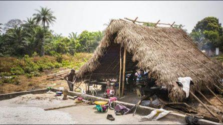 Oktatással is segíti hazánk az afrikai földművelést