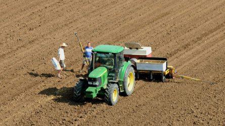 Háromszáz kárpátaljai mezőgazdász nyert támogatást a magyar kománytól