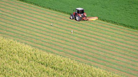 Jövőre változnak a termeléshez kötött támogatások és a zöldítés feltételei