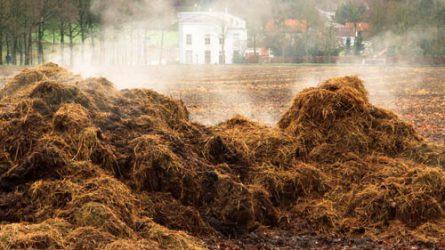 EIP-AGRI szakértői fókuszcsoport a tápanyagok újrahasznosításában