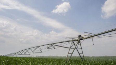 A kukoricaöntözés helyzete és kilátásai