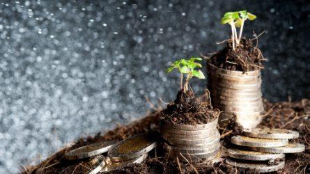 Kedvező változások az agrártámogatások rendszerében
