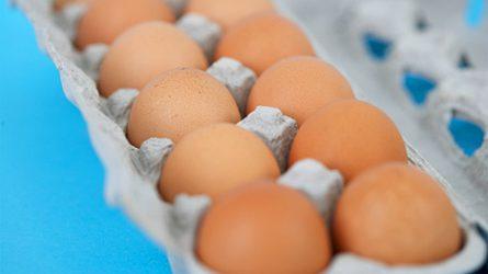 A tojások egyszerűbben összehasonlíthatóak lesznek