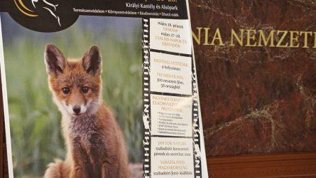 Idén is Gödöllőn rendezik meg a Nemzetközi Természetfilm Fesztivált