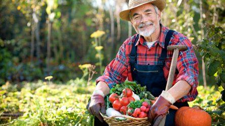 A kistermelőkre vonatkozó szabályokról bővebben