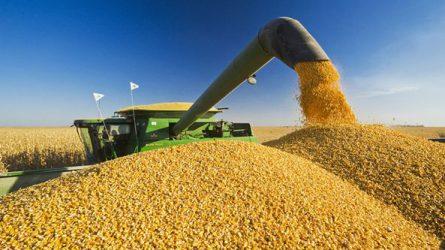 Jövőre közel 900 milliárd forint jut agrár- és vidékfejlesztési támogatásokra