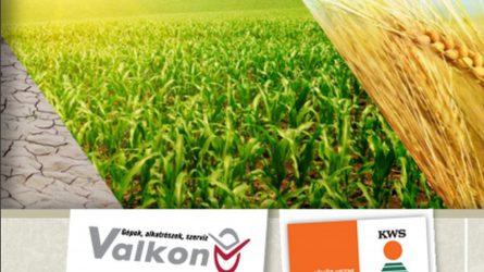 Közös szántóföldi bemutatót tart a KWS és a Valkon Kft.