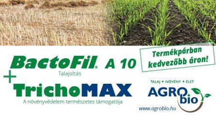 BactoFil A10 az őszi kalászosok termesztés technológiájában