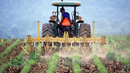 Újabb lendületben a mezőgazdasági beruházások