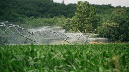 """NAK: Az """"agrárkutak"""" létesítése továbbra is engedélyköteles marad"""