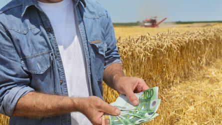 Október közepén megindulhatnak a támogatáselőleg-kifizetések