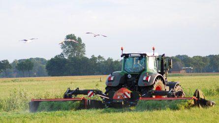 Újabb halálos mezőgazdasági baleset