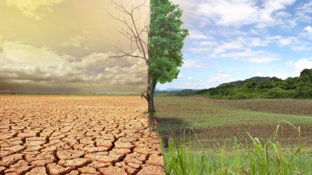 Fontos lesz a környezet- és éghajlatvédelem a 2020 utáni közös agrárpolitikában