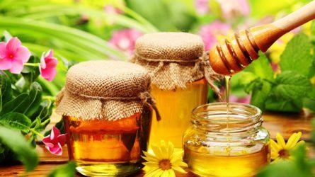 Sok méz rovarirtóval szennyezett