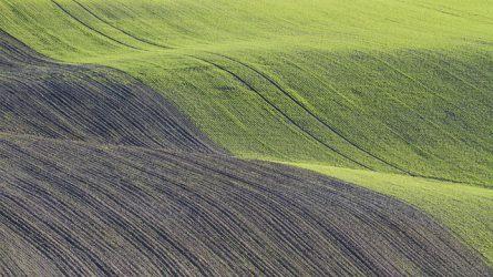 6-9 fok között van a talajhőmérséklet – lehet még vetni!