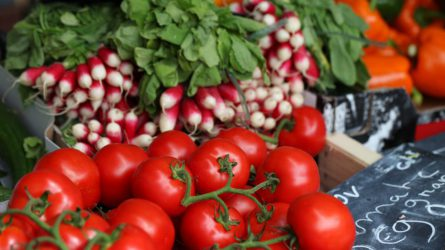 A kén - fontos növényi tápanyag a zöldségtermesztésben is