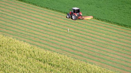 A zöldítésről tartott konzultációt a Földművelésügyi Minisztérium