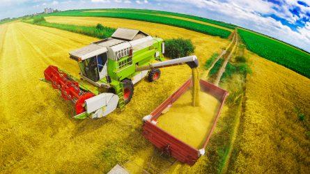 A tavalyi kimagasló után idén átlagos évet zárt a mezőgazdaság
