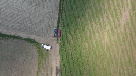 Pilóta nélküli repülőgépek alkalmazása a precíziós mezőgazdaságban