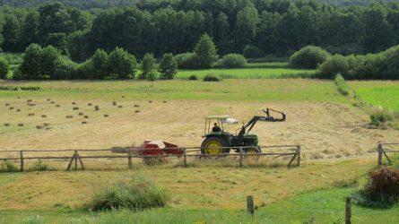 Két nap múlva tilos az ökológiai jelentőségű területeken a növényvédő szerek használata